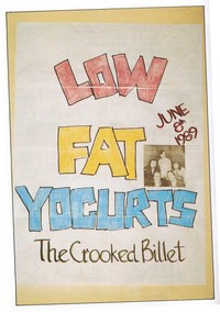 The Low Fat Yogurts